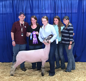 Spruill Farms Winners